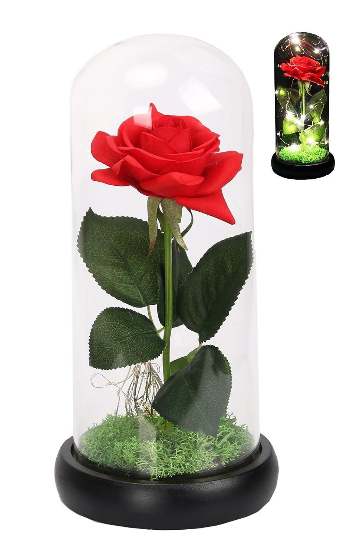 CaoBin Rosa de seda roja y luz LED que dura para siempre en cúpula de cristal inspirada y la base de madera negra cubierta con rosas artificiales de flores ...