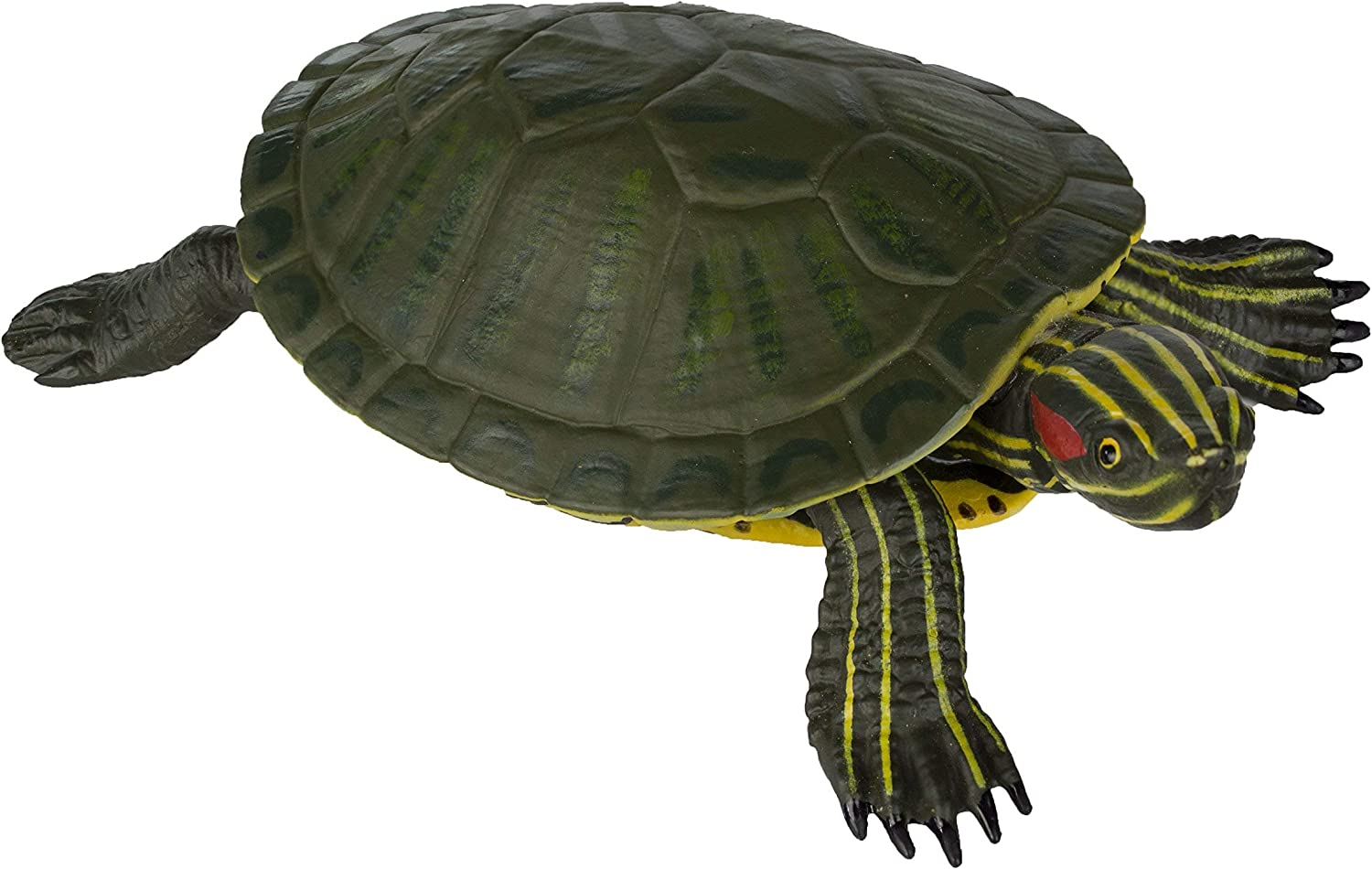 Amazon Com Safari Ltd Incredible Creatures Red Eared Slider Turtle Toys Games
