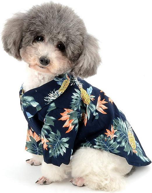 Zunea - Camiseta hawaiana para perros pequeños, color azul: Amazon.es: Hogar