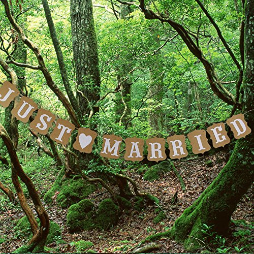 Wedding Banner Photo Props Decoration 3m (Brown) - 7