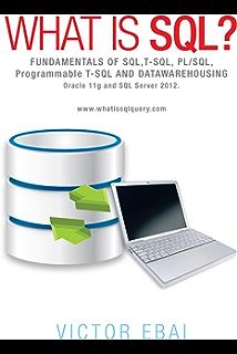 Read PDF 100+ SQL Queries: Jet SQL for Microsoft Office