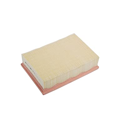 ACDelco A3184C Professional Air Filter: Automotive