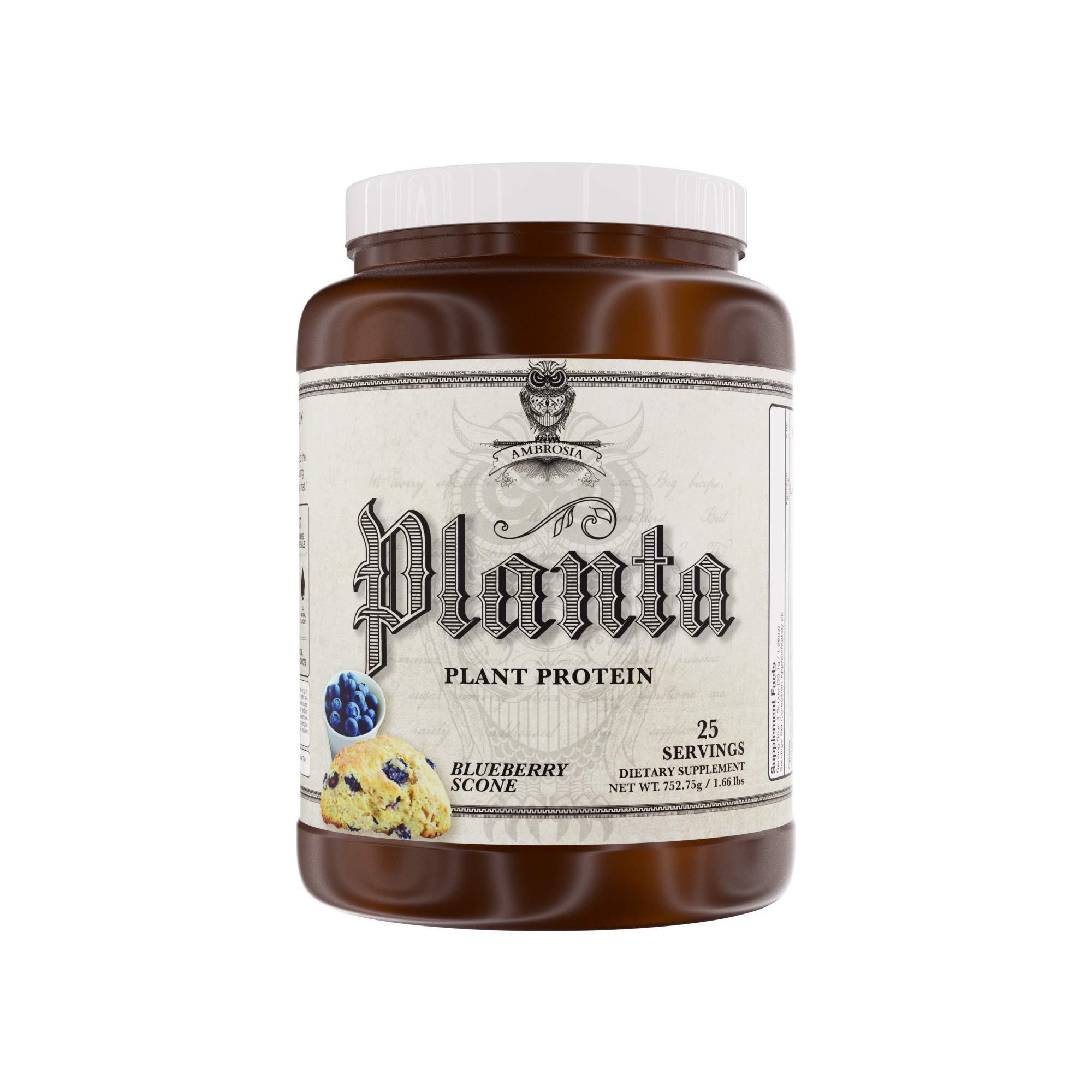 Ambrosia Planta | Organic Plant-Based Protein | 25 Servings (Blueberry Scone)