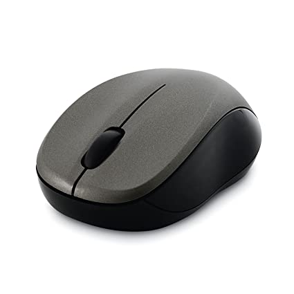 fc70fa1329c Amazon.com: Verbatim Wireless Silent Mouse 2.4GHz with Nano Receiver -  Ergonomic, Blue LED, Noiseless and Silent Click for Mac and Windows -  Graphite: ...