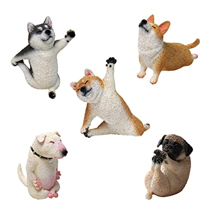 Amazon.com: Yendar Animal Life Baby Yoga Dog 1 caja (8 ...