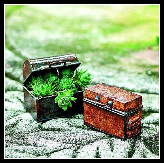 Juego de 2 baúles de hada miniatura para jardín JE 01520: Amazon.es: Juguetes y juegos