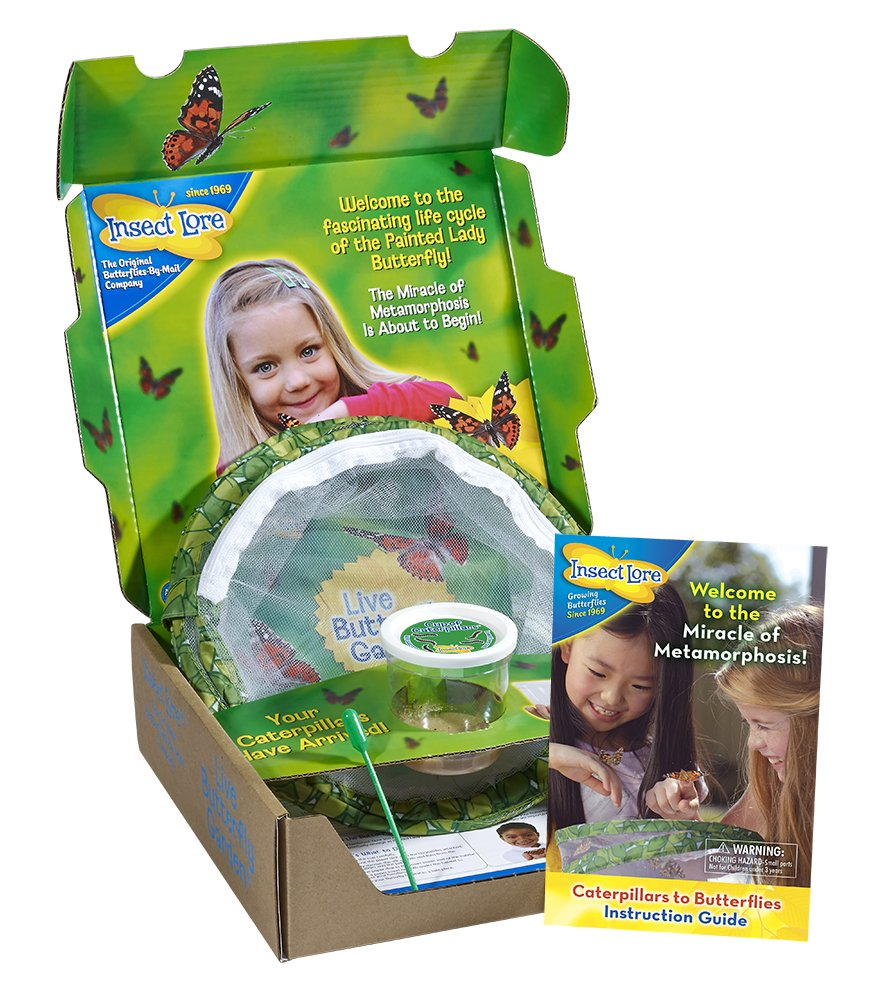 Insect Lore L2221 Butterfly Garden With Live Cup Of Caterpillars Pin Snakes Anatomy Diagram Labeled On Pinterest Habitat Kit Toys Games
