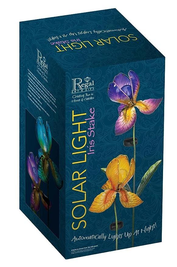 Ø: 20cm Solarleuchten Höhe: 100cm Solar Glas Iris Fuchsia
