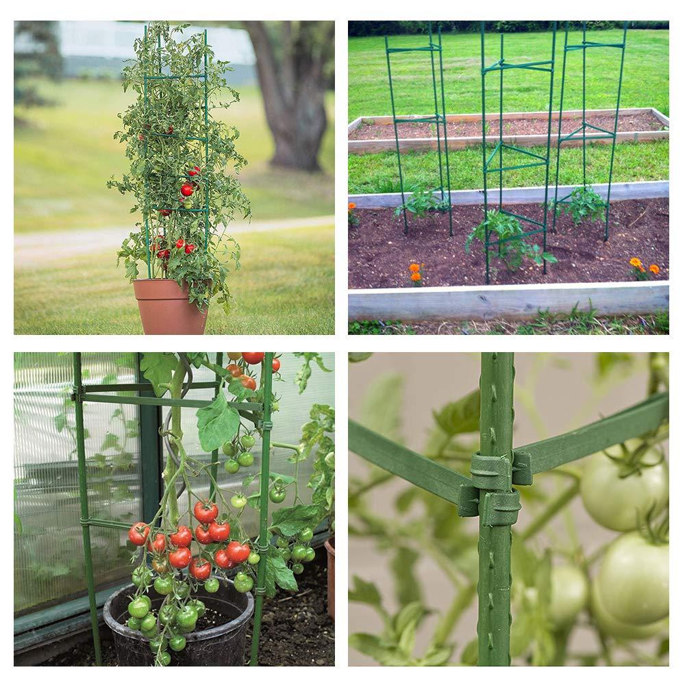 GROWNEER, Paquete de 6 Jaula de Plantas montada para Tomate ...