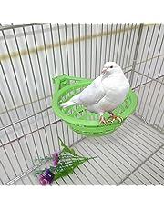 Jiamins Nid d'oiseau Cage Suspendue Creuse en Plastique Outil d'éclosion d'oeufs