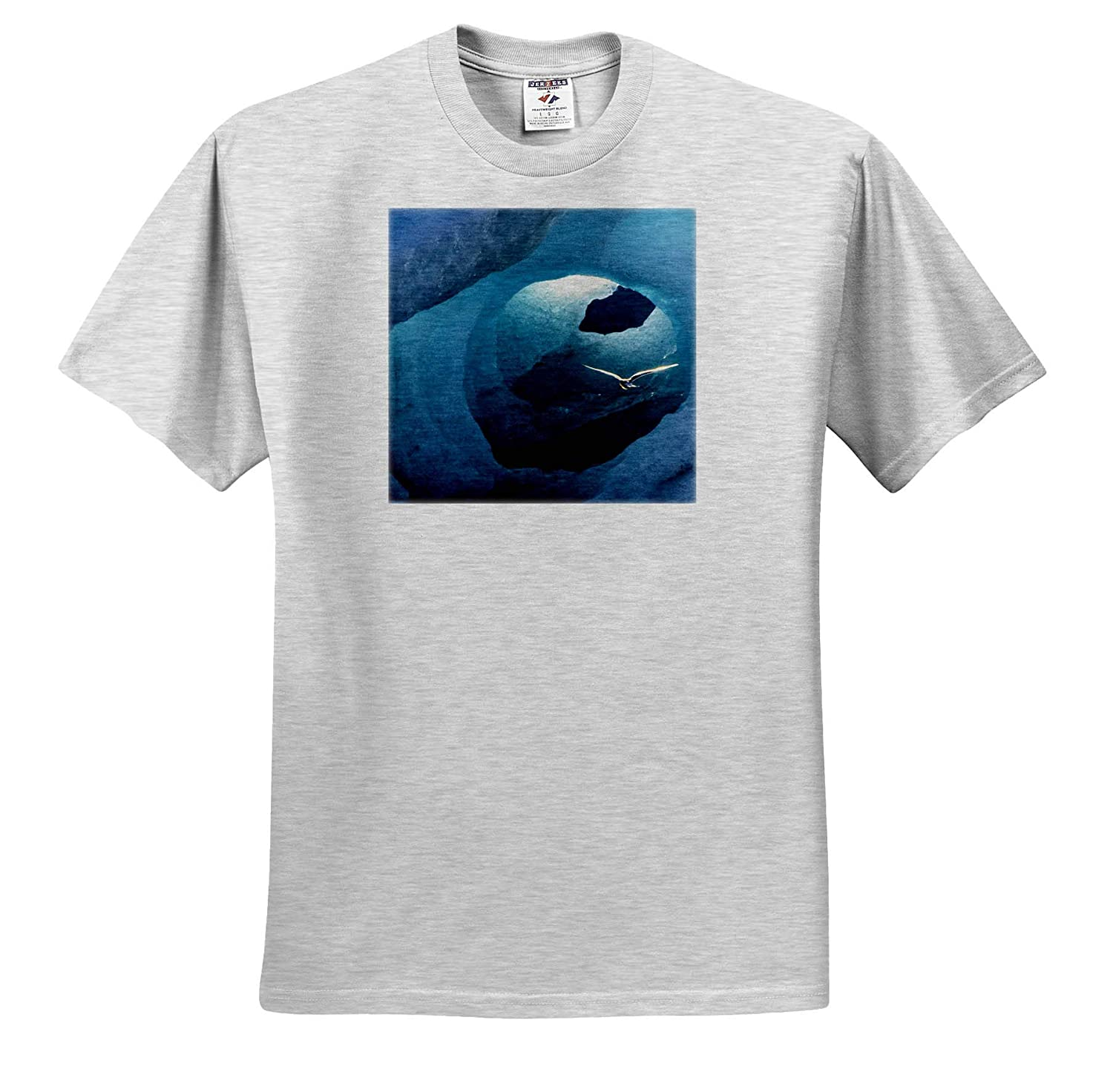 Birds Iceland Arctic Tern in an Ice Tunnel 3dRose Danita Delimont Adult T-Shirt XL ts/_313628