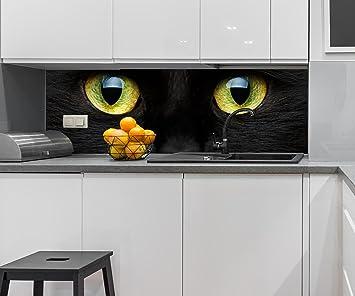 wandmotiv24 Cocina Pared Trasera Primer Plano de Gato Negro Design M1013 160 x 50 cm (W ...