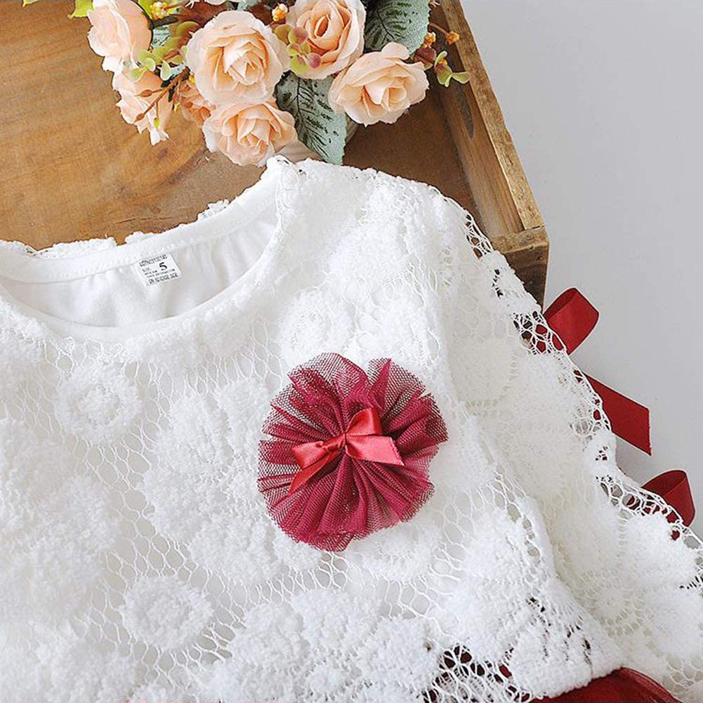 RONSHIN 0-3 Year Old Infant Newborn Baby Flower Lace Cotton Long Sleeve Round Neck Princess Dress Pink 80cm