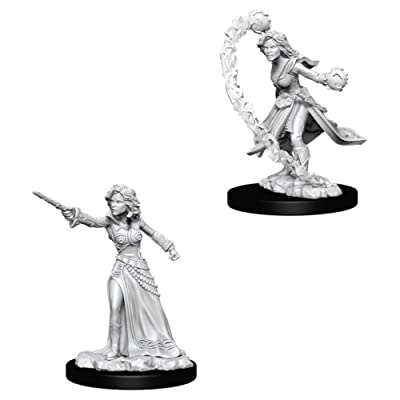 Pathfinder Deep Cuts Unpainted Miniatures: Wave 6: Human Female Wizard: Toys & Games