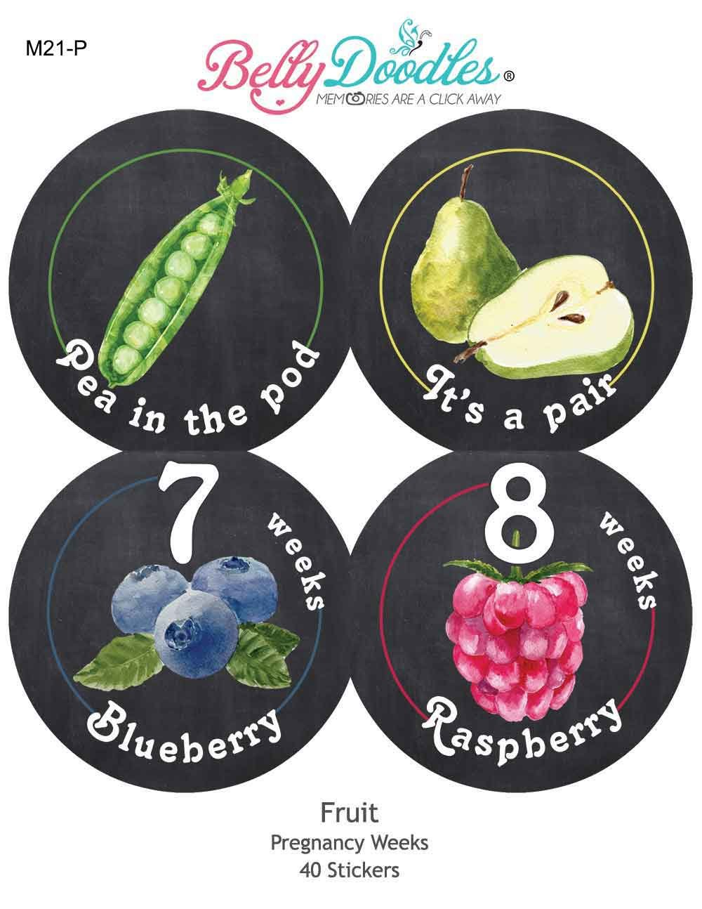 Belly Doodles 40 Weekly Pregnancy Stickers Fruit 3.94inch Digitaldoodlebug M21-P