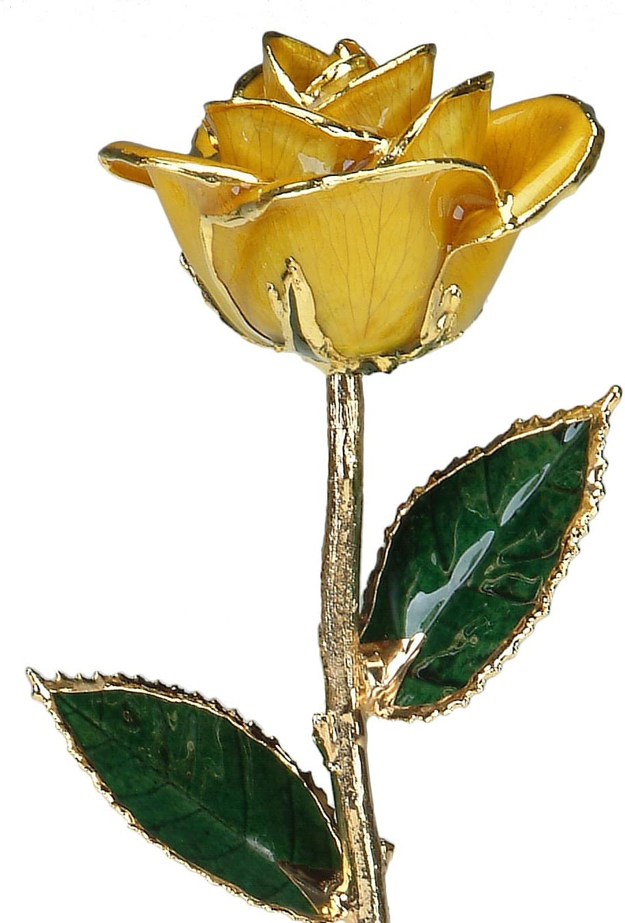 Living Gold Yellow 24k Gold Rose Real Rose Dipped in Gold