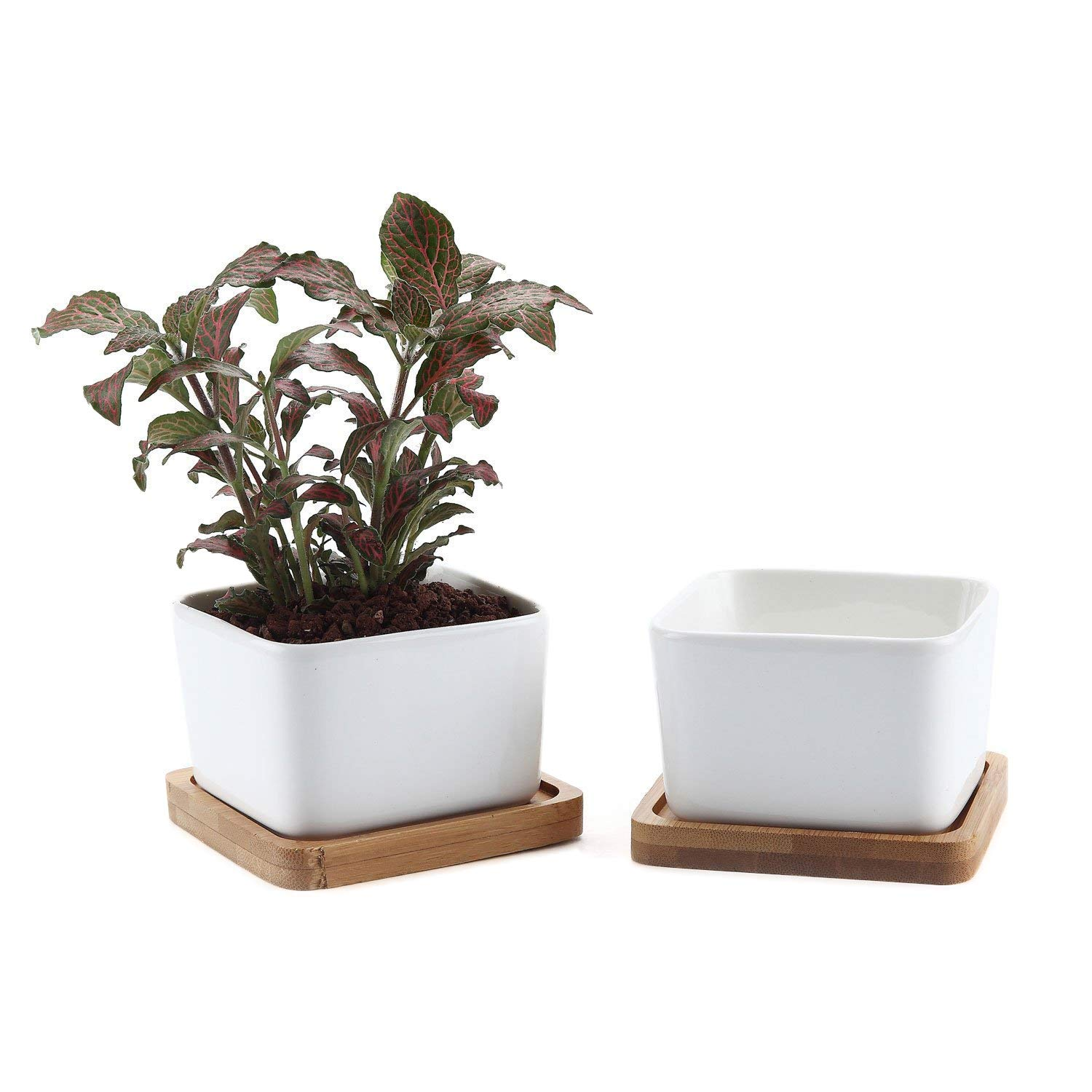 T4U 3.5 Inch Ceramic White Square NO.1 Succulent Plant Pot Cactus Plant Pot with Free Bamboo Tray Package 1 Pack of 2