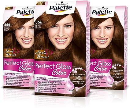 Palette Perfect Gloss Coloración del Cabello 566 Avellana ...