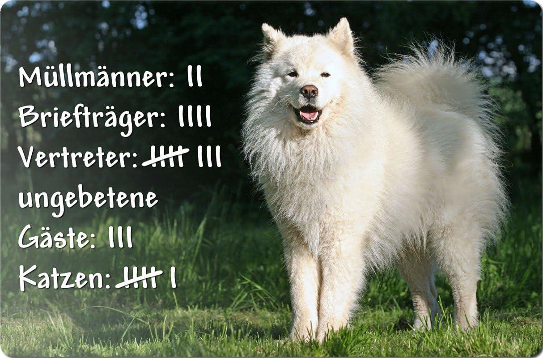 SMJ 04 T4 SAMOJEDE Samoyede Schlittenhund Metall WARNSCHILD Schild Hundeschild Sign ++