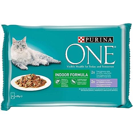 Purina ONE comida húmeda para gato Indoor filetes en salsa 12 x [4 x 85