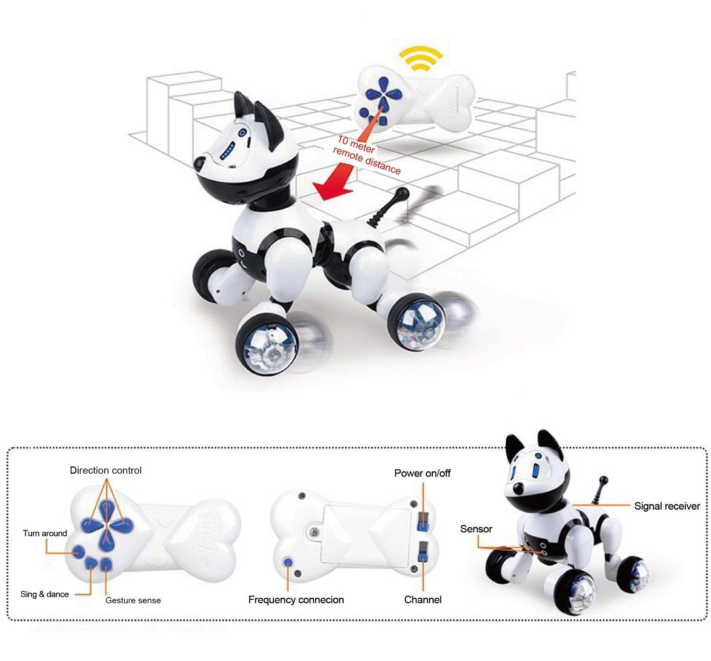 Hi-Tech Wireless Remote Control Robot Dog Smart Interactive Puppy Senses Gesture, Sings, Dances for Boys, Girls, Kids and Children by HI-TECH OPTOELETRONICS CO., LTD. (Image #5)
