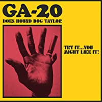 Does Hound Dog Taylor