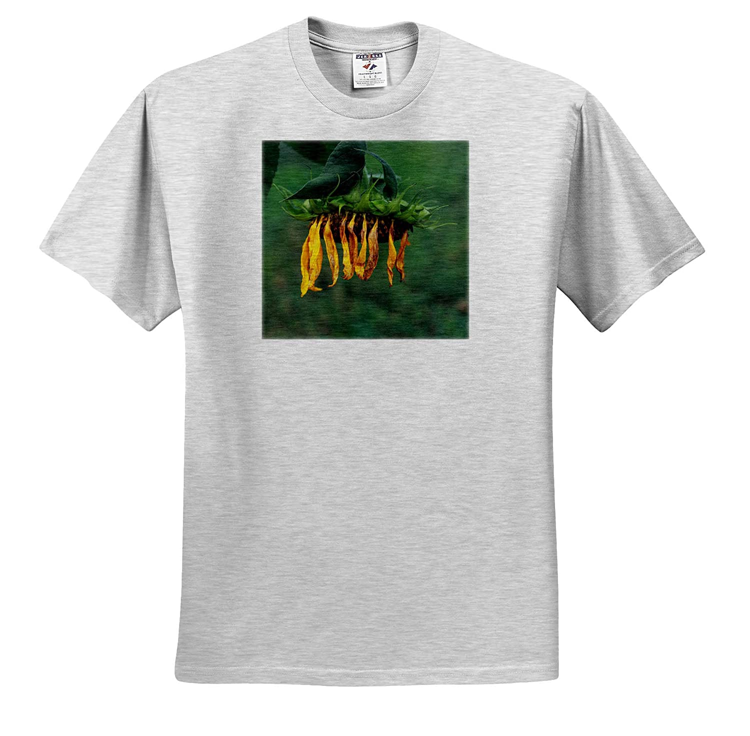Flowers 3dRose Stamp City - Adult T-Shirt XL ts/_320182 Photograph of a Weeping Sunflower Too Tired to find The Sun