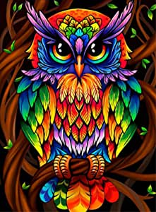 Colorful Cartoon Owl Diamond Painting Kits - PigPigBoss 5D Full Diamond Painting by Numbers for Adults Owl Diamond Dots Kit Arts Crafts Home Decor Kids (11.8 x 15.7 inches)