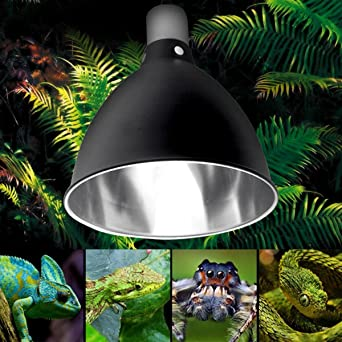 Lampe Reptil E27 Ceramic Global Schildkröte Uvb Licht Heat Uv Halter bY6yf7vIgm