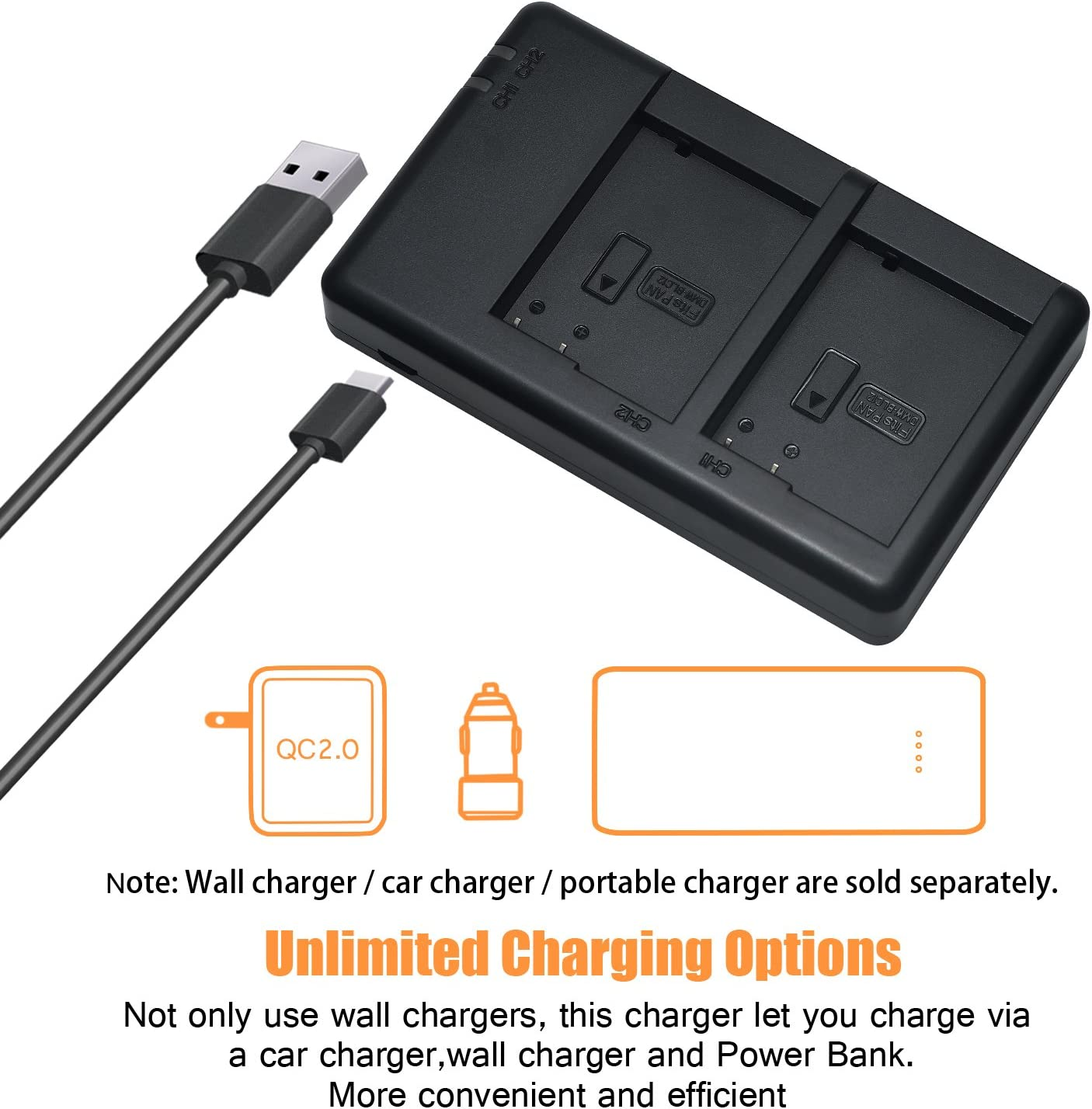 Rapid Dual Battery Charger with Micro USB Cable for Panasonic Lumix DMC-G5 G6 G7 GH2 GX8 FZ200 DMC-FZ2500 DMC-FZ2000 Leica Q Camera as DMW-BLC12E BP-DC12E DSTE 2X DMW-BLC12 Battery