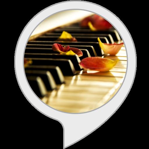 Amazon com: Relaxing Music: Piano Music: Alexa Skills