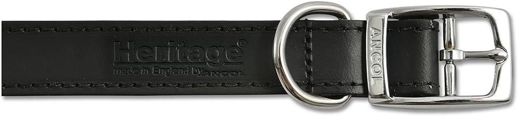 Ancol Pet Products - Collar de piel modelo Buckle Up de la línea Heritage para perros