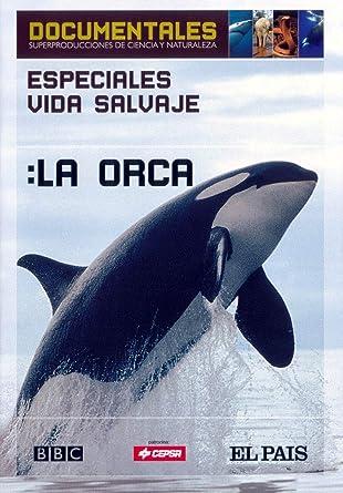 Especiales vida Salvaje: La Orca: Amazon.es: BBC / El Pais: Cine y ...
