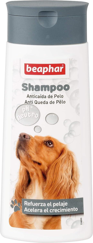 Beaphar BEA10655 Champú Perros Anticaída - 250 ml
