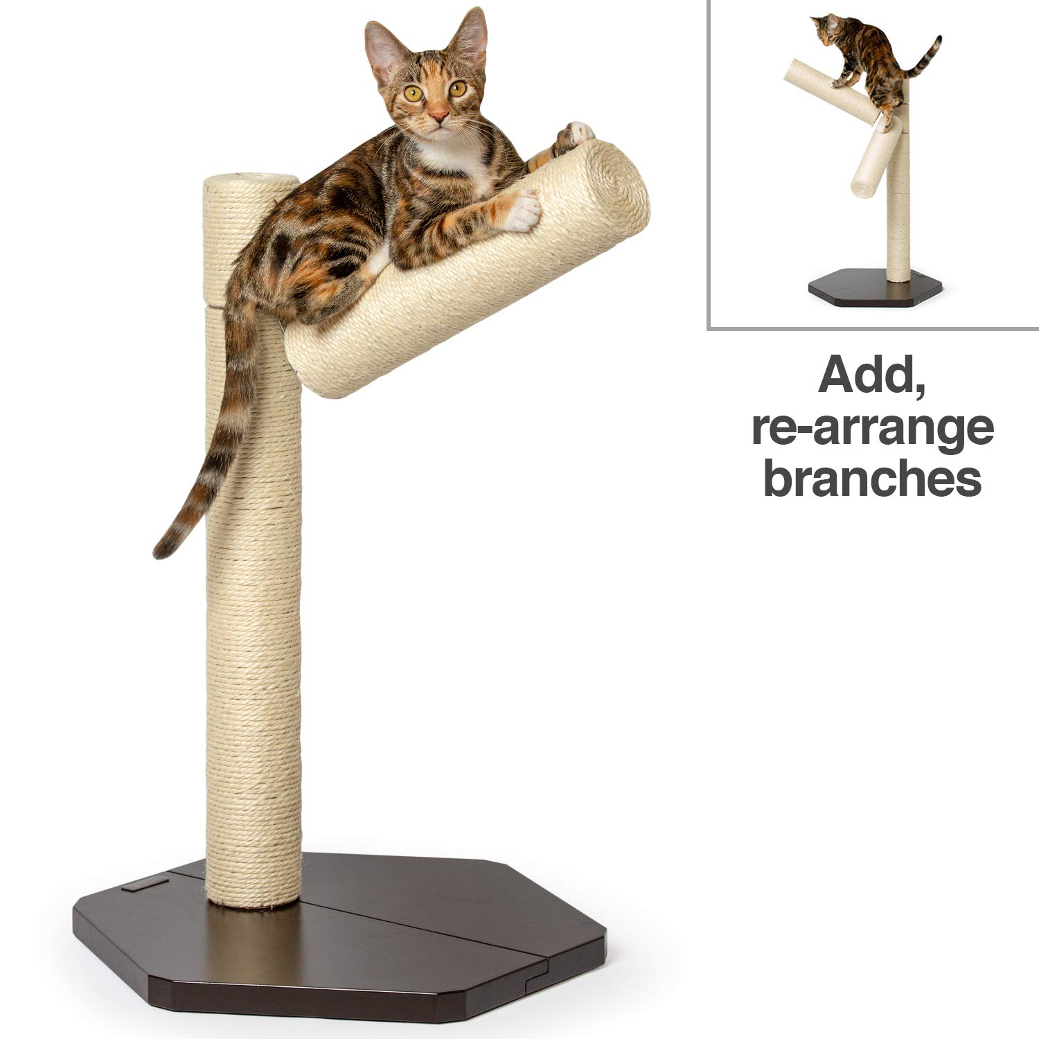 PetFusion [New Branch-Out Cat Scratching Post. Tall Vertical Post with Innovative Tree Branch Design. Add-on kit & Replacement Posts Available. by PetFusion
