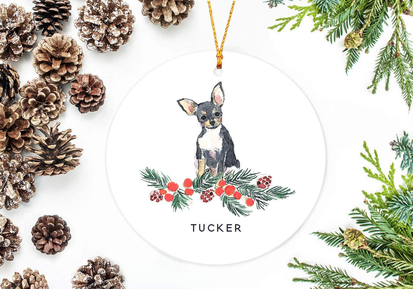 Amazon Com Slobyy Black Chihuahua Christmas Ornament With Holly Berry Branch Hand Painted Cartoon Cute Ceramics Porcelain Christmas Tree Decoration 3 Inches Home Kitchen