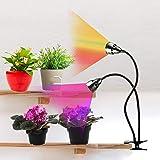 LED Grow Light for Indoor Plants,Full Spectrum Dual Head Desk Clip Plant Light for Seedlings/Seeds/Succulents,Adjustable Goos