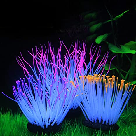 Anémonas luminosas artificiales de silicona de varios colores para ...