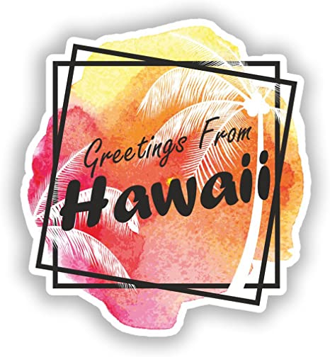 2 x Greetings From Hawaii Vinyl Stickers Travel Luggage #7662