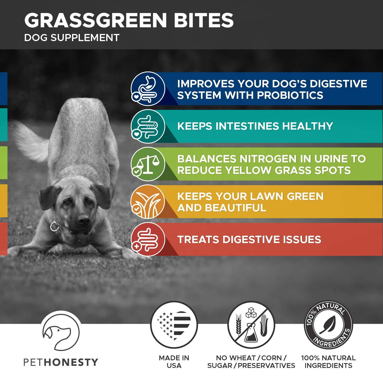 PetHonesty GrassGreen Grass Burn Spot Chews for Dogs - Dog Pee Lawn Spot Saver Treatment Caused by Dog Urine - Cranberry, Apple Cider Vinegar, DL-Methionine Grass Treatment Rocks - 90 Chew Treats by PetHonesty (Image #3)