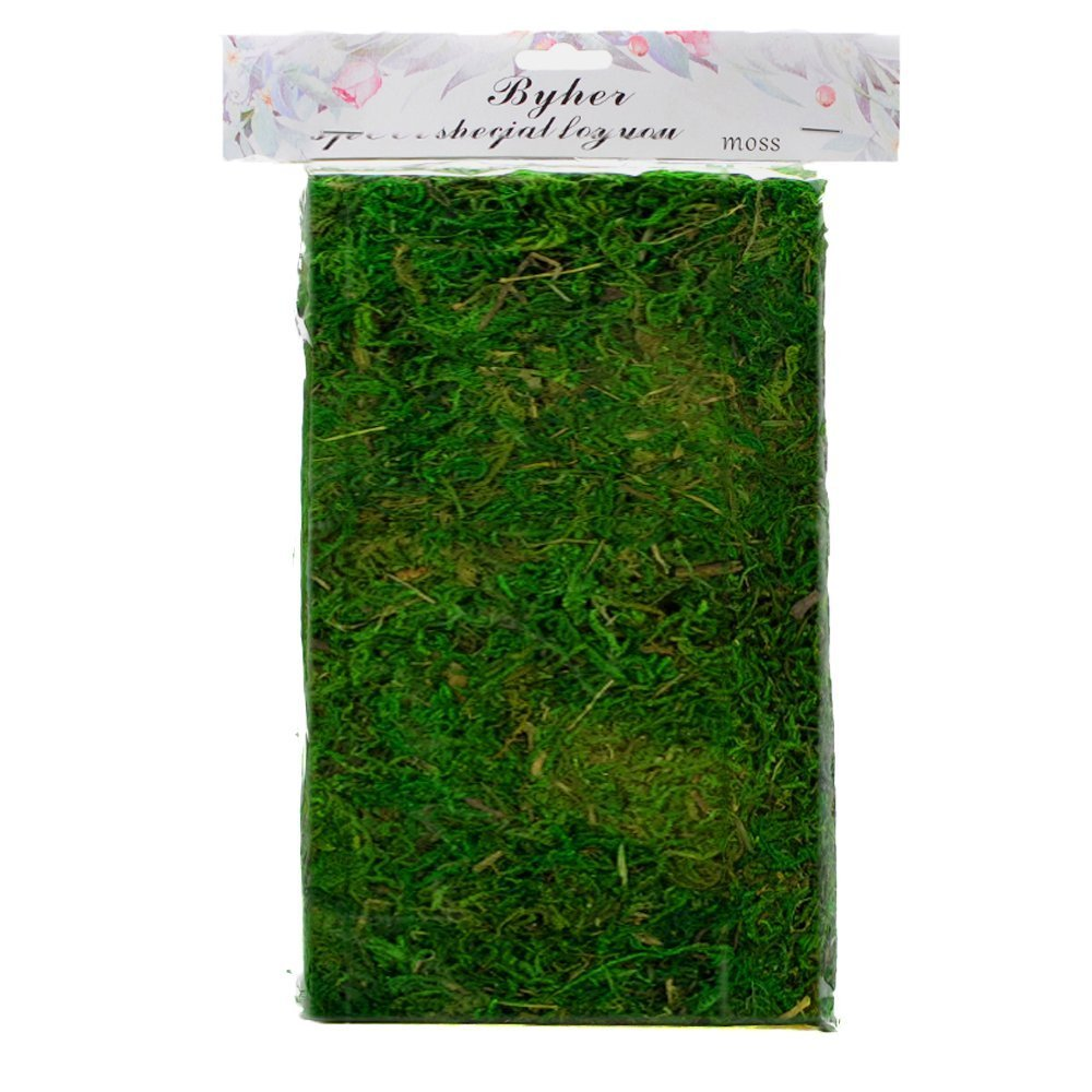 Byher 92927 Preserved Forest Moss, Fresh Green, 16-Ounce