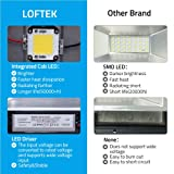 50W Daylight Floodlight, LOFTEK Outdoor Super