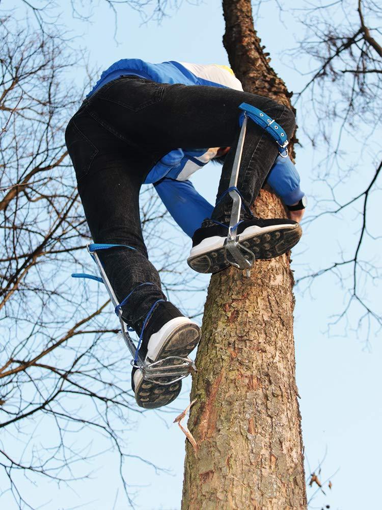 HUAWELL Juego de Escalador de árboles, Incluye Almohadillas ...