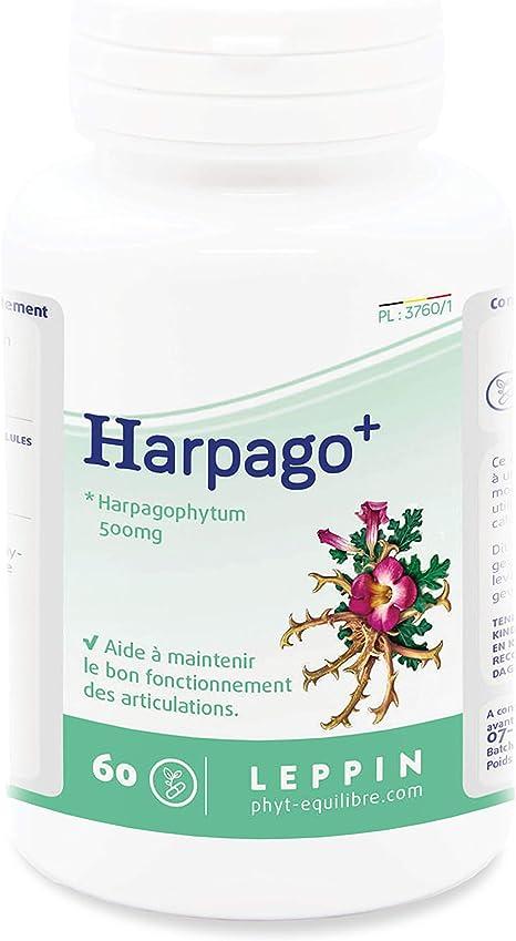 Harpagophytum - Bienfaits, Arthrose et douleur articulaire - Comparatif