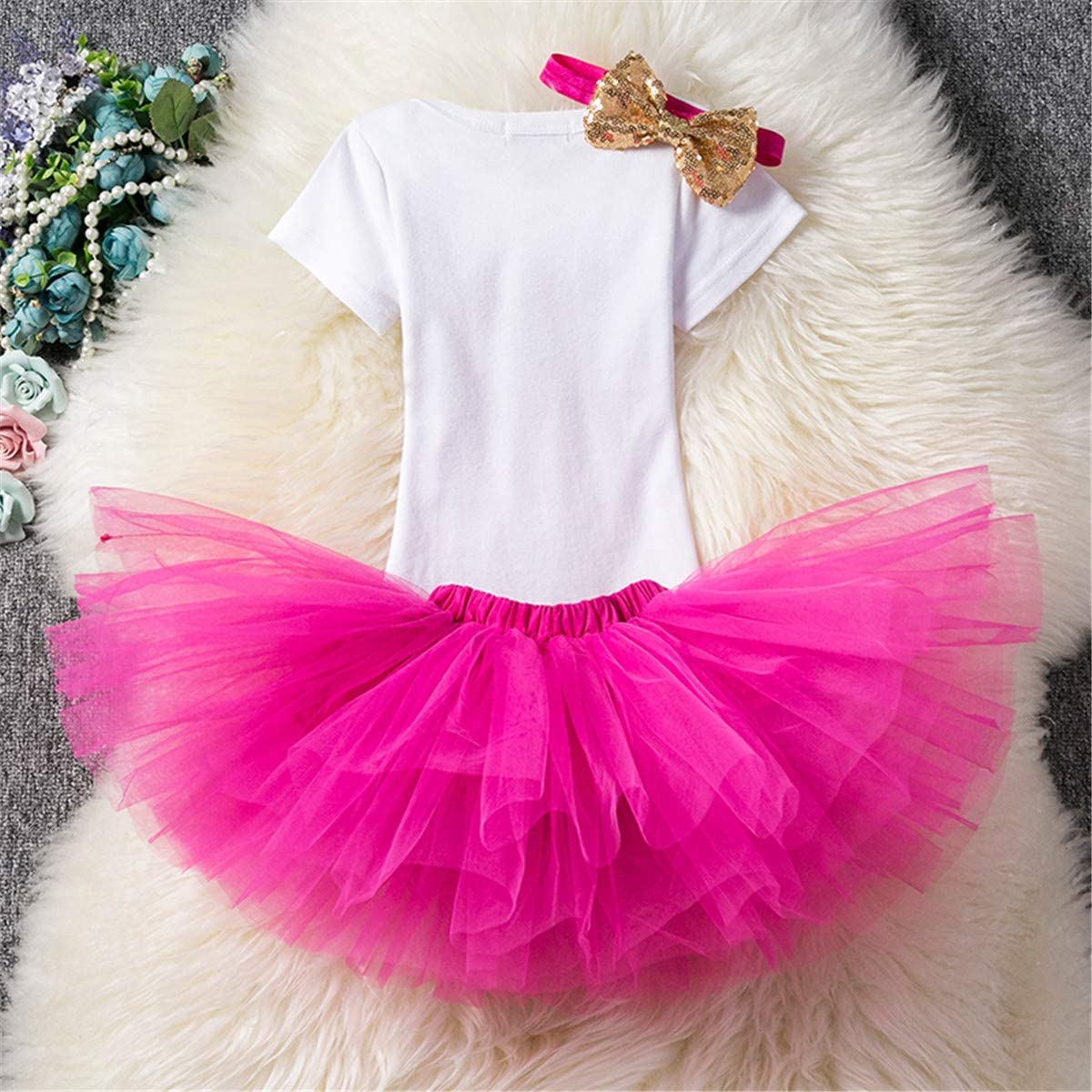 TTYAOVO Baby Girl 1st Birthday Princess Tutu Skirt Clothes 3 Piece Set Outfits Romper Skirt Headband + Leggings 4-24 Months 19-24 Months Rose 4-24M