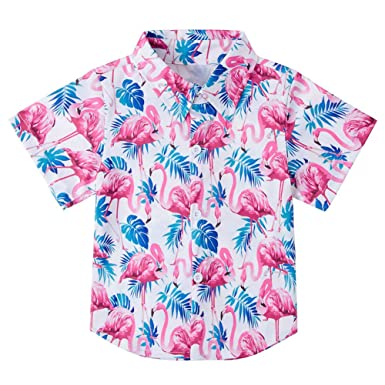 VIIHAHN Men Design Im Not Gay But 20 Bucks is 20 Man Travel Round Neck Short Sleeve T-Shirts
