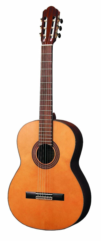 ゼンオン クラシックギター ZG-250N B0045OUTB2