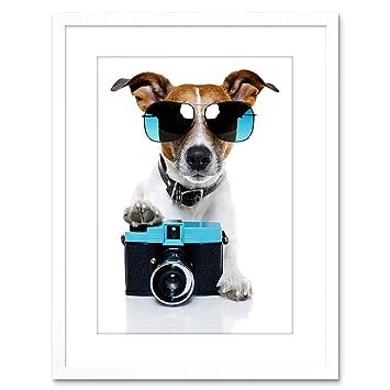 Amazon.com: Foto Perro Jack Russell Shades cámara Framed ...