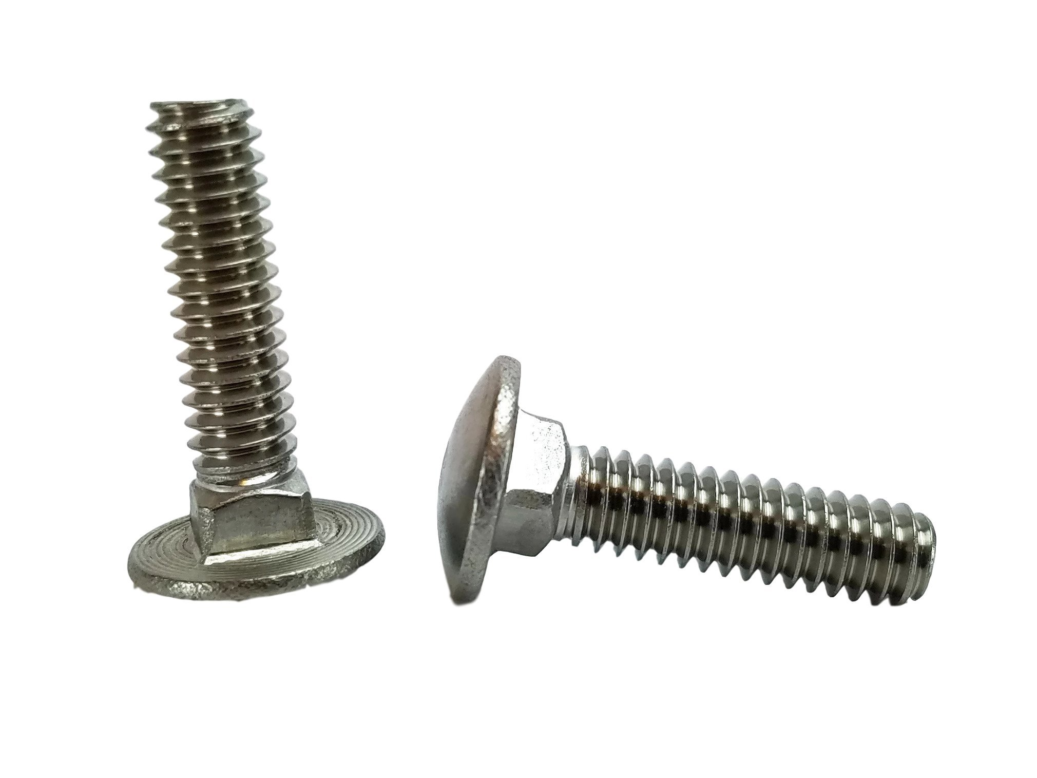 Stainless 1/4-20 x 1'' Carriage Bolt (3/4'' to 5'' Lengths Available in Listing), 18-8 Stainless Steel,50 Pieces (1/4-20x1)