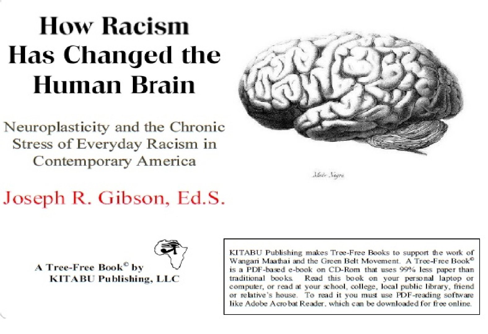 How Racism Has Changed The Human Brain Neuroplasticity And The